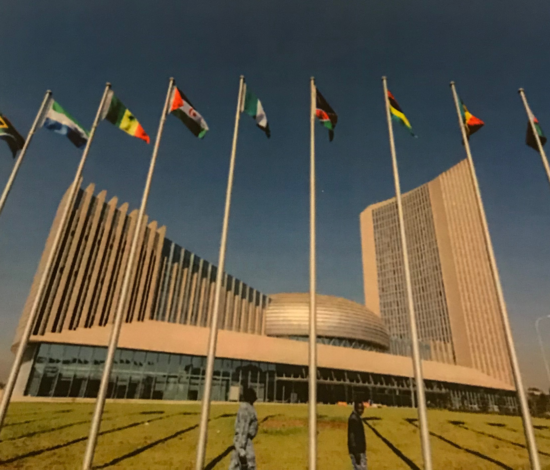 Participación en la Cumbre Política Africana en Addis Abeba
